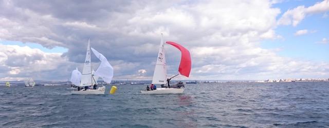 Flotta pugliese J24 al campionato invernale